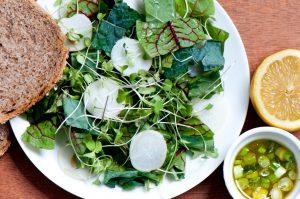 Sorrel_Kale_Sprout_Salad
